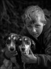 traveller-with-his-dogs_019